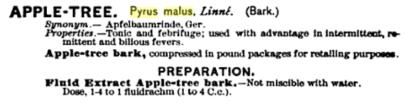 Pyrus Malus