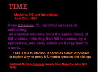 MS Spirochaete