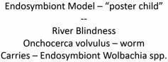 Endosymbiont Model